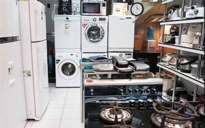 سرقتهای سریالی از فروشگاههای لوازم خانگی در پوشش خریدار